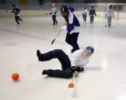 First Annual Towpath Broomball Tournament of Champions @ Bill Gray's Regional Iceplex